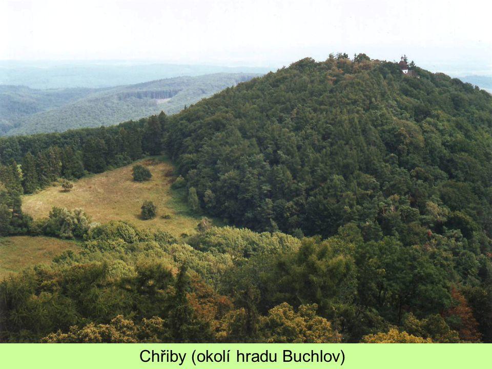 Chřiby (okolí hradu Buchlov)
