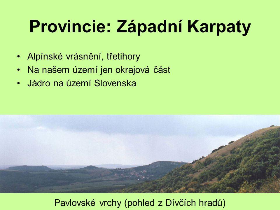 Provincie: Západní Karpaty Alpínské vrásnění, třetihory Na našem území jen okrajová část Jádro na území Slovenska Pavlovské vrchy (pohled z Dívčích hr