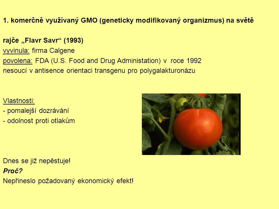"""1. komerčně využívaný GMO (geneticky modifikovaný organizmus) na světě rajče """"Flavr Savr"""" (1993) vyvinula: firma Calgene povolena: FDA (U.S. Food and"""