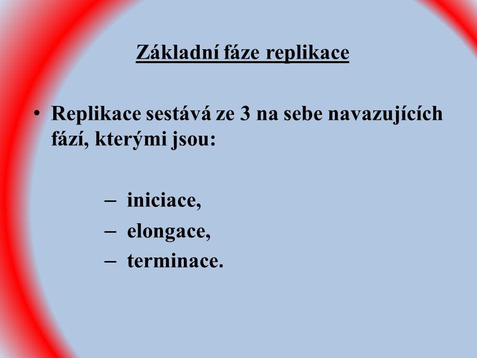 Základní fáze replikace Replikace sestává ze 3 na sebe navazujících fází, kterými jsou: – iniciace, – elongace, – terminace.