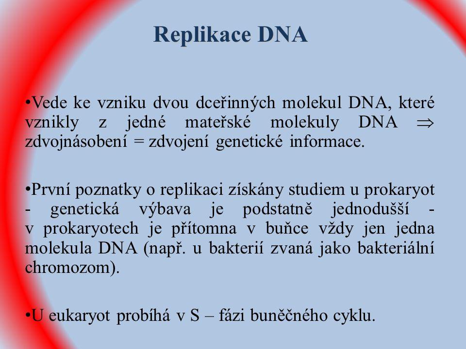 Replikace DNA Vede ke vzniku dvou dceřinných molekul DNA, které vznikly z jedné mateřské molekuly DNA  zdvojnásobení = zdvojení genetické informace.