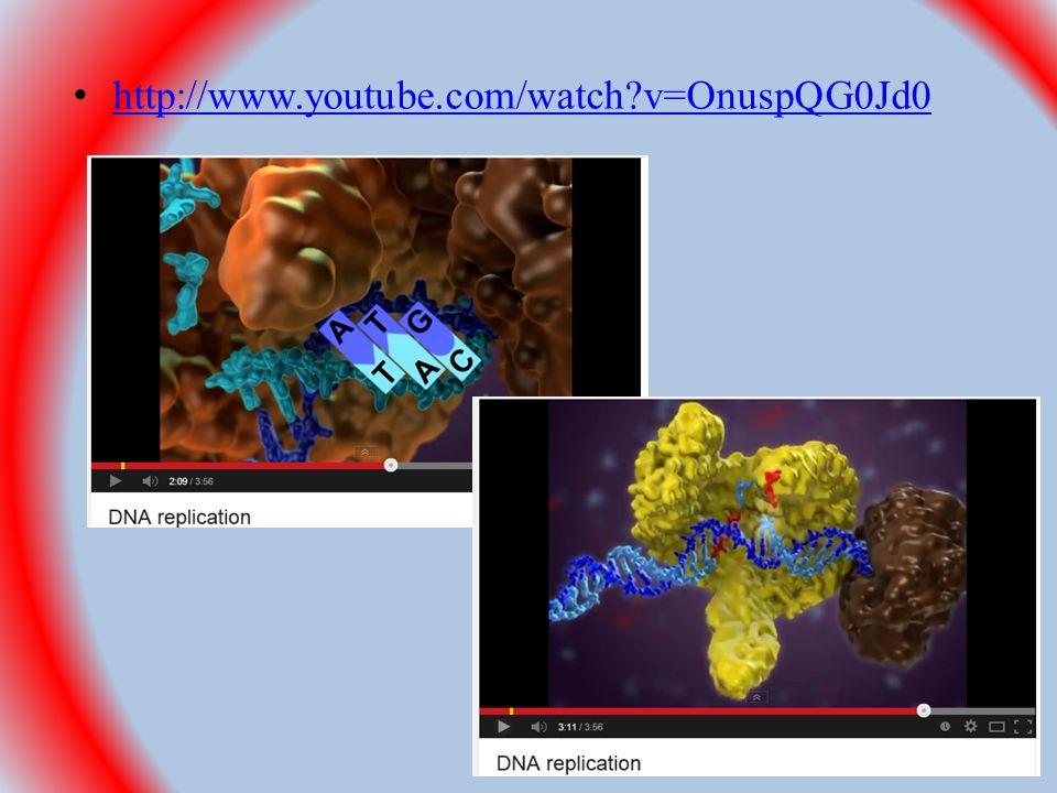 http://www.youtube.com/watch?v=OnuspQG0Jd0