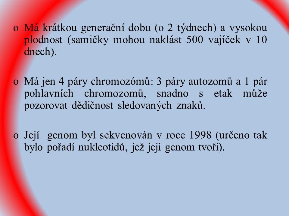 Zdroje: Nečas, O.et al. Obecná biologie pro lékařské fakulty.