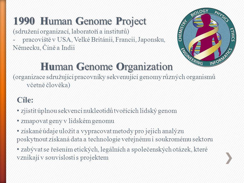 1990 Human Genome Project (sdružení organizací, laboratoří a institutů) -pracoviště v USA, Velké Británii, Francii, Japonsku, Německu, Číně a Indii Human Genome Organization (organizace sdružující pracovníky sekvenující genomy různých organismů včetně člověka) Cíle: zjistit úplnou sekvenci nukleotidů tvořících lidský genom zmapovat geny v lidském genomu získané údaje uložit a vypracovat metody pro jejich analýzu poskytnout získaná data a technologie veřejnému i soukromému sektoru zabývat se řešením etických, legálních a společenských otázek, které vznikají v souvislosti s projektem