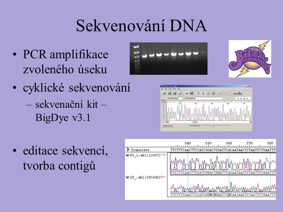 Sekvenování DNA PCR amplifikace zvoleného úseku cyklické sekvenování –sekvenační kit – BigDye v3.1 editace sekvencí, tvorba contigů