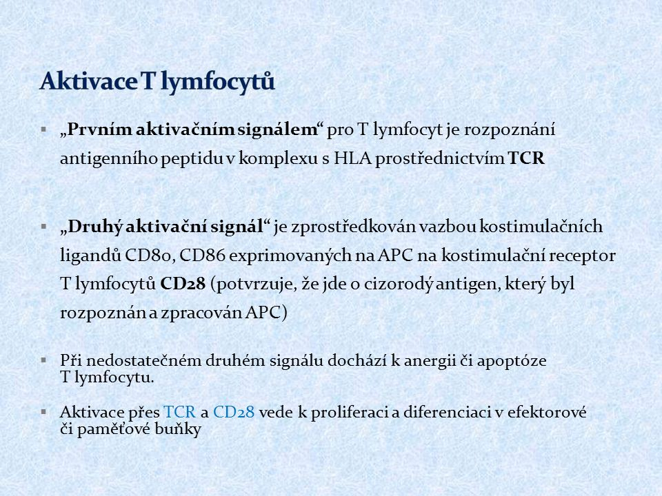 """ """" Prvním aktivačním signálem pro T lymfocyt je rozpoznání antigenního peptidu v komplexu s HLA prostřednictvím TCR  """"Druhý aktivační signál je zprostředkován vazbou kostimulačních ligandů CD80, CD86 exprimovaných na APC na kostimulační receptor T lymfocytů CD28 (potvrzuje, že jde o cizorodý antigen, který byl rozpoznán a zpracován APC)  Při nedostatečném druhém signálu dochází k anergii či apoptóze T lymfocytu."""