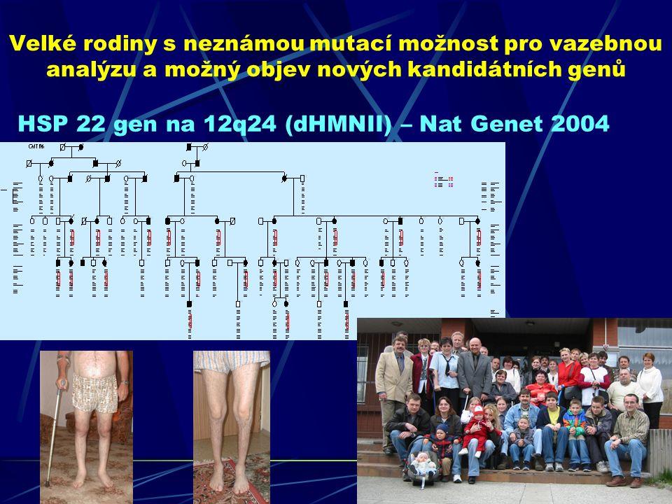 Velké rodiny s neznámou mutací možnost pro vazebnou analýzu a možný objev nových kandidátních genů HSP 22 gen na 12q24 (dHMNII) – Nat Genet 2004