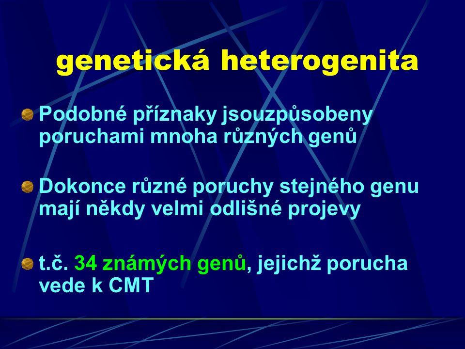 genetická heterogenita Podobné příznaky jsouzpůsobeny poruchami mnoha různých genů Dokonce různé poruchy stejného genu mají někdy velmi odlišné projevy t.č.