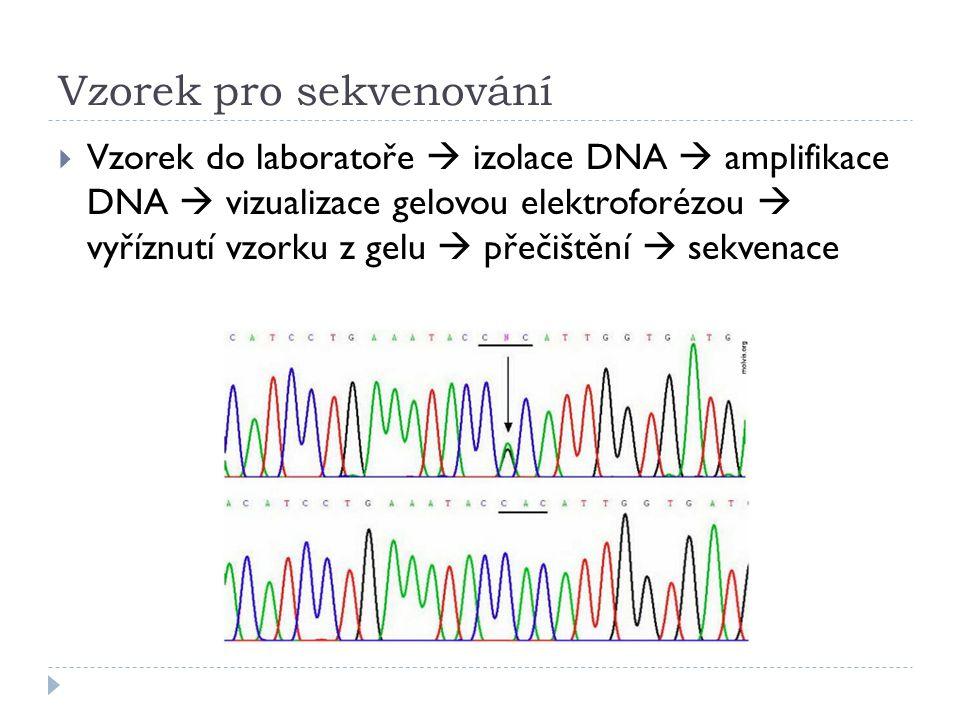 Vzorek pro sekvenování  Vzorek do laboratoře  izolace DNA  amplifikace DNA  vizualizace gelovou elektroforézou  vyříznutí vzorku z gelu  přečišt