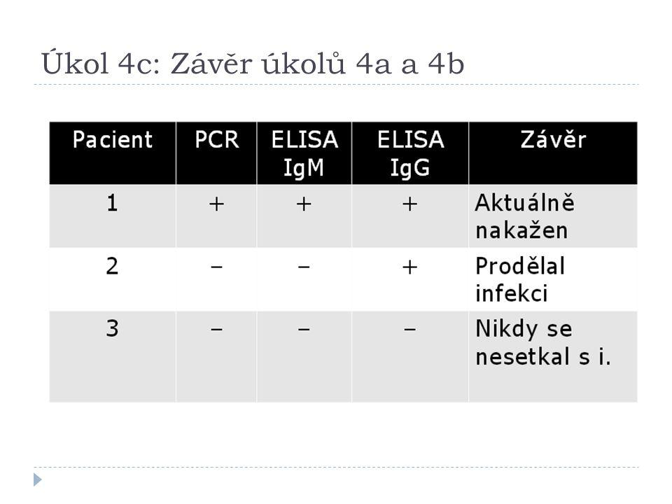Úkol 4c: Závěr úkolů 4a a 4b