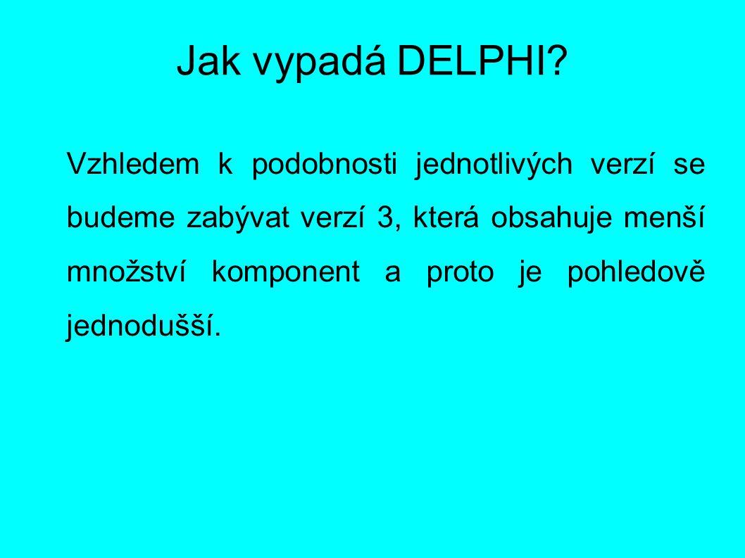 Jak vypadá DELPHI? Vzhledem k podobnosti jednotlivých verzí se budeme zabývat verzí 3, která obsahuje menší množství komponent a proto je pohledově je