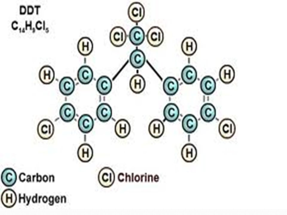 DDT - plným názvem: 1,1,1-trichlor-2,2-bis(4- chlorfenyl)ethan insekticid používaný na ošetřování zemědělských plodin a na likvidaci přenašečů infekčních chorob (Anopheles).
