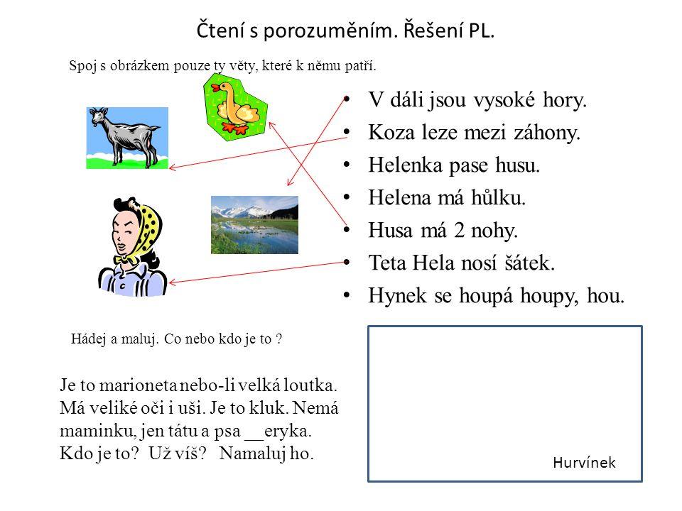 Čtení s porozuměním. Řešení PL. V dáli jsou vysoké hory.