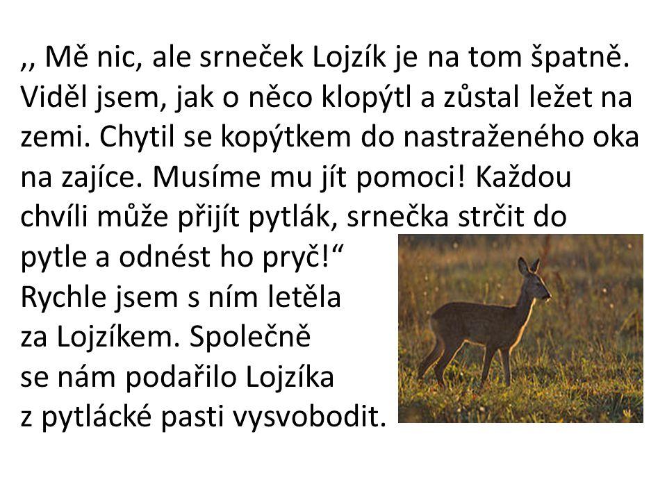 ,, Mě nic, ale srneček Lojzík je na tom špatně.