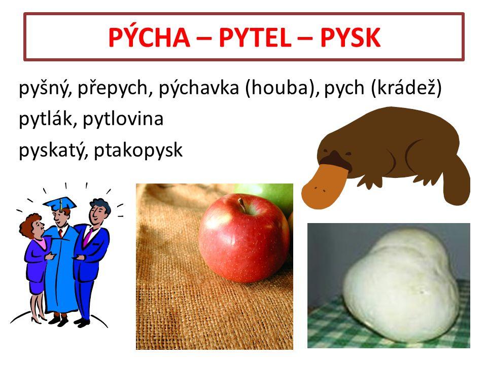 PÝCHA – PYTEL – PYSK pyšný, přepych, pýchavka (houba), pych (krádež) pytlák, pytlovina pyskatý, ptakopysk