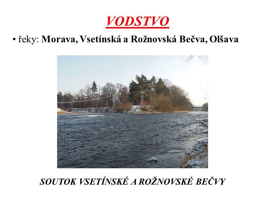 VODSTVO řeky: Morava, Vsetínská a Rožnovská Bečva, Olšava SOUTOK VSETÍNSKÉ A ROŽNOVSKÉ BEČVY
