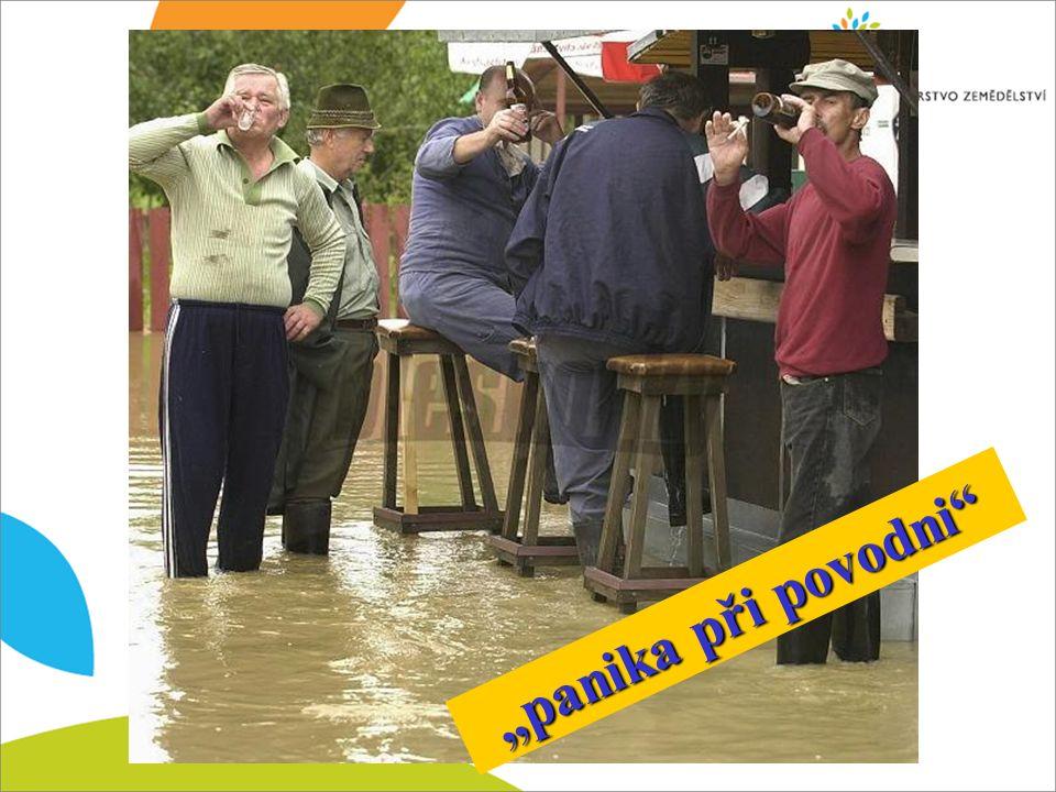 """panika při povodni"