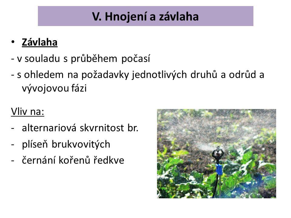 Závlaha - v souladu s průběhem počasí - s ohledem na požadavky jednotlivých druhů a odrůd a vývojovou fázi Vliv na: -alternariová skvrnitost br.