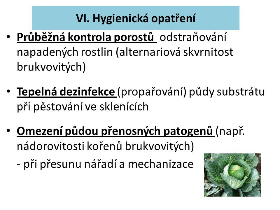 Průběžná kontrola porostů odstraňování napadených rostlin (alternariová skvrnitost brukvovitých) Tepelná dezinfekce (propařování) půdy substrátu při pěstování ve sklenících Omezení půdou přenosných patogenů (např.