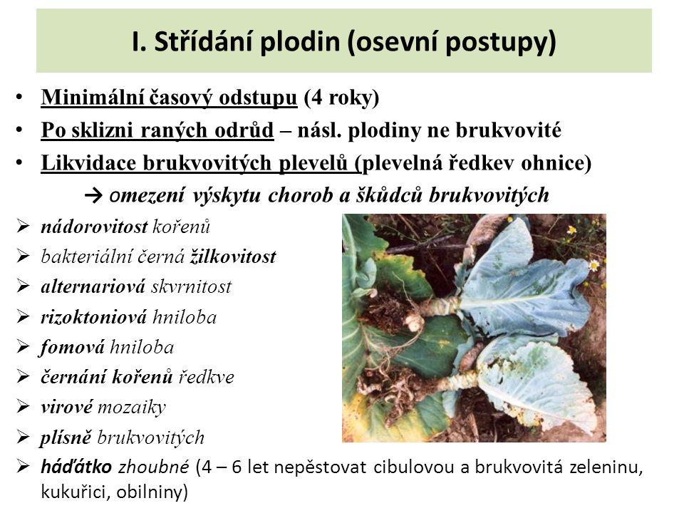 I. Střídání plodin (osevní postupy) Minimální časový odstupu (4 roky) Po sklizni raných odrůd – násl. plodiny ne brukvovité Likvidace brukvovitých ple