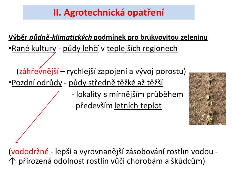 Výběr půdně-klimatických podmínek pro brukvovitou zeleninu Rané kultury - půdy lehčí v teplejších regionech (záhřevnější – rychlejší zapojení a vývoj porostu) Pozdní odrůdy - půdy středně těžké až těžší - lokality s mírnějším průběhem především letních teplot (vododržné - lepší a vyrovnanější zásobování rostlin vodou - ↑ přirozená odolnost rostlin vůči chorobám a škůdcům) II.