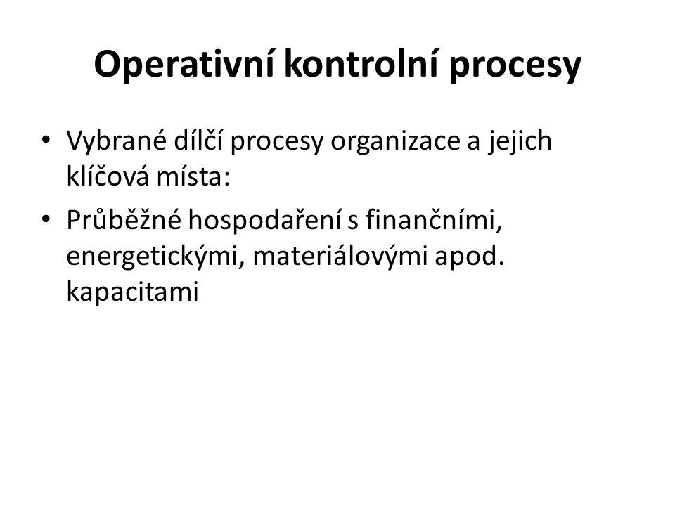 Operativní kontrolní procesy Vybrané dílčí procesy organizace a jejich klíčová místa: Průběžné hospodaření s finančními, energetickými, materiálovými apod.