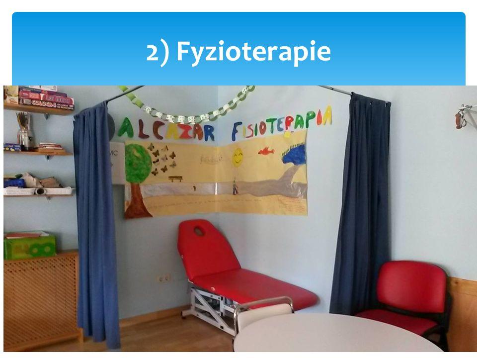 2) Fyzioterapie