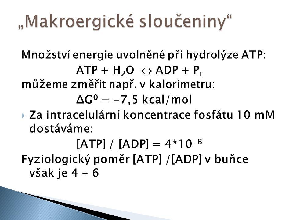 Množství energie uvolněné při hydrolýze ATP: ATP + H 2 O  ADP + P i můžeme změřit např. v kalorimetru: ΔG 0 = -7,5 kcal/mol  Za intracelulární konce