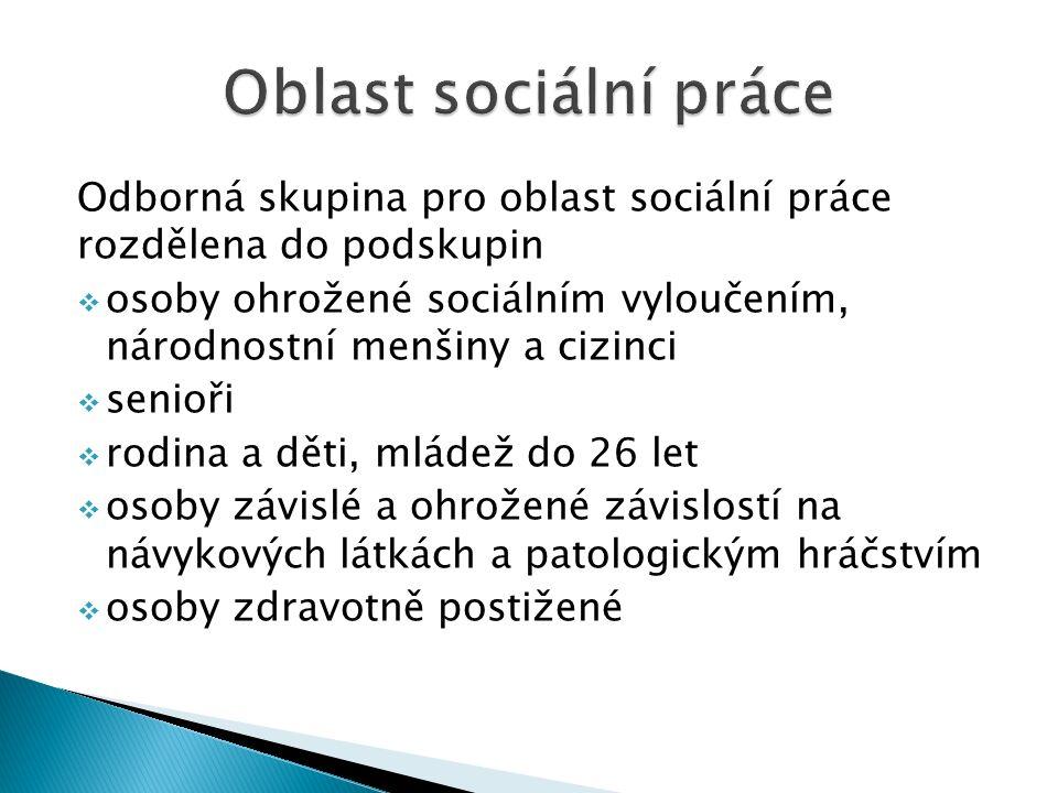 Odborná skupina pro oblast sociální práce rozdělena do podskupin  osoby ohrožené sociálním vyloučením, národnostní menšiny a cizinci  senioři  rodi