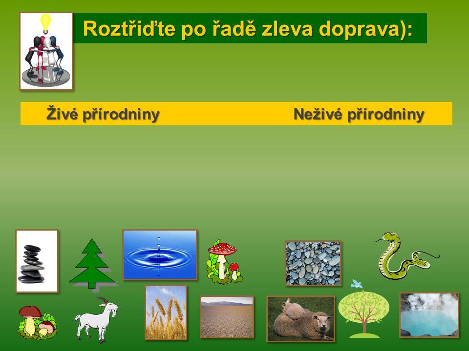 Roztřiďte po řadě zleva doprava): Roztřiďte po řadě zleva doprava): Živé přírodniny Neživé přírodniny Živé přírodniny Neživé přírodniny