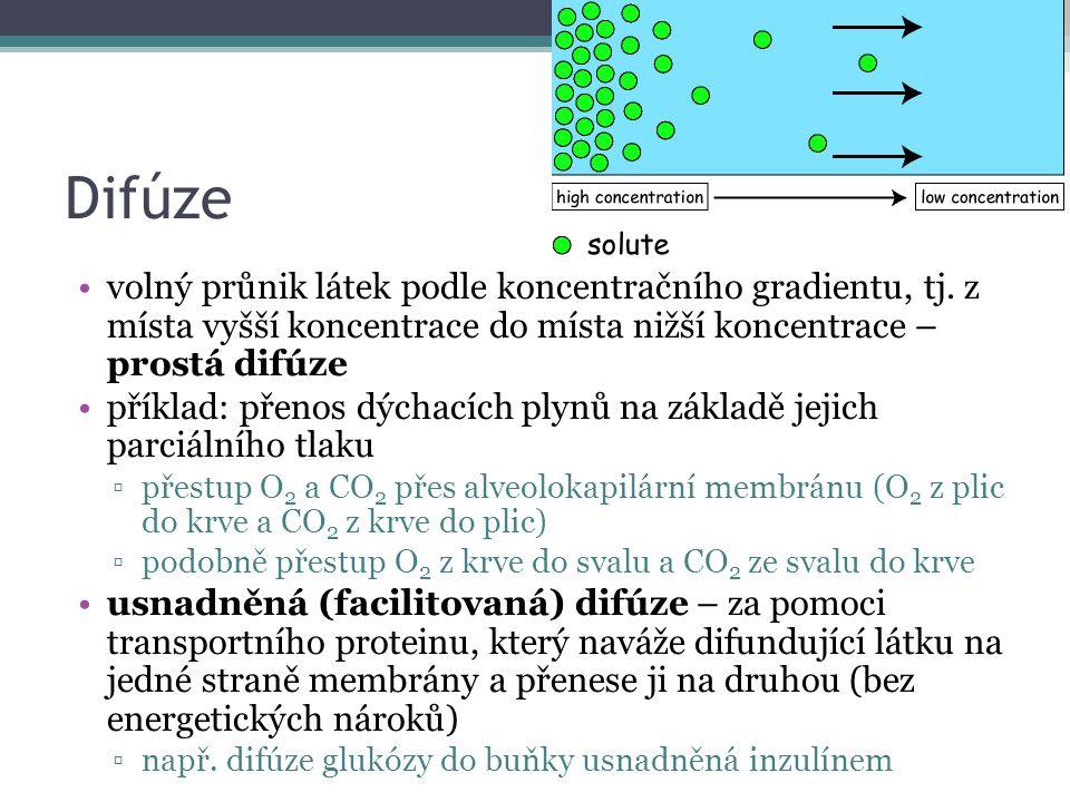 Difúze volný průnik látek podle koncentračního gradientu, tj.