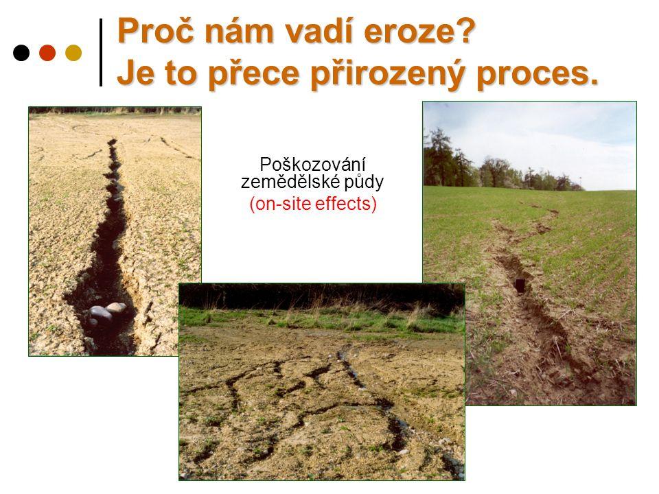 Poškozování zemědělské půdy (on-site effects) Proč nám vadí eroze? Je to přece přirozený proces.