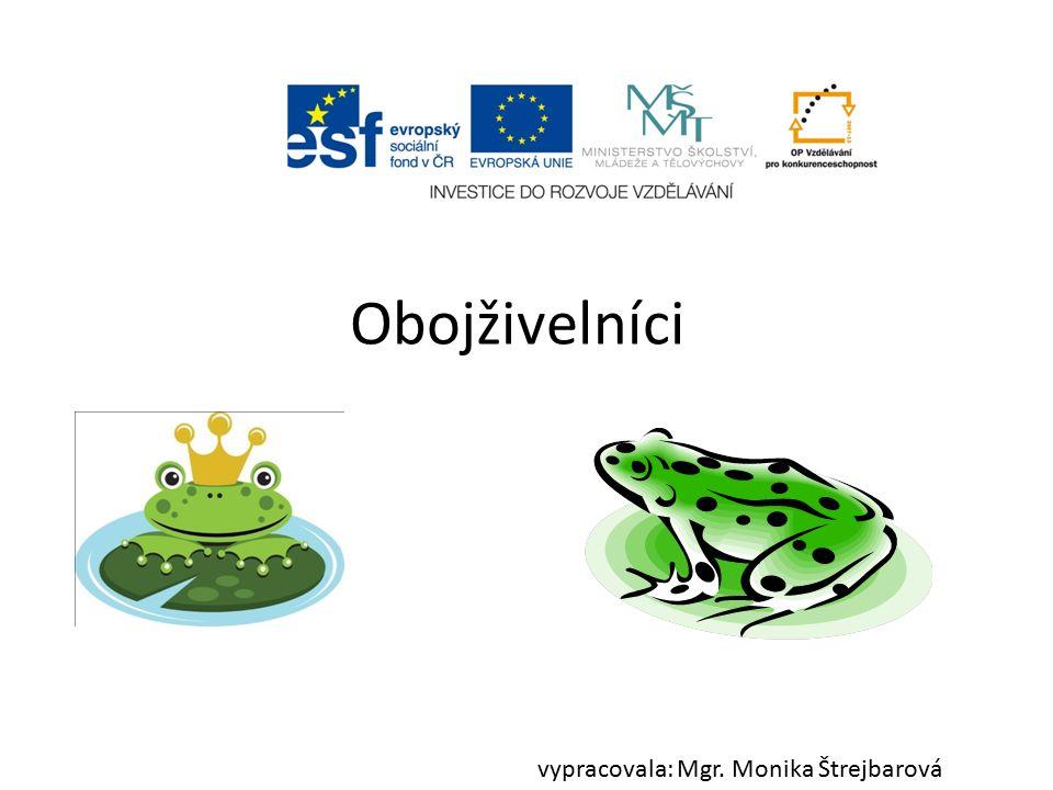 Obojživelníci vypracovala: Mgr. Monika Štrejbarová