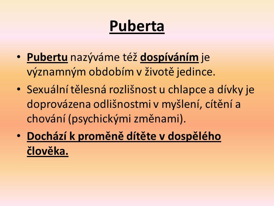 Puberta Pubertu nazýváme též dospíváním je významným obdobím v životě jedince. Sexuální tělesná rozlišnost u chlapce a dívky je doprovázena odlišnostm