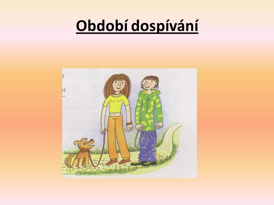 Úkol k zamyšlení Ve dvojici diskutujte o změnách v období dětství a dospívání.
