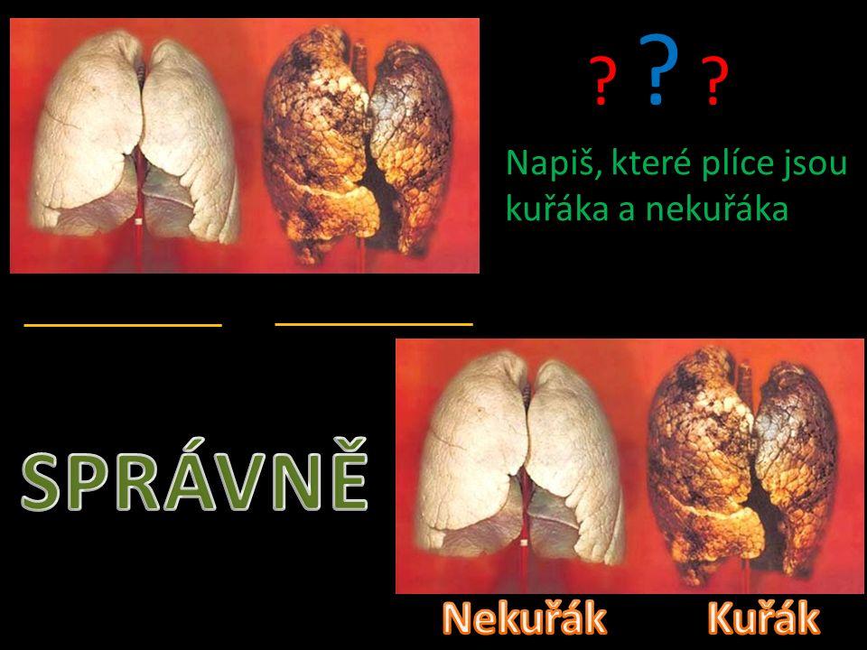 Napiš, které plíce jsou kuřáka a nekuřáka