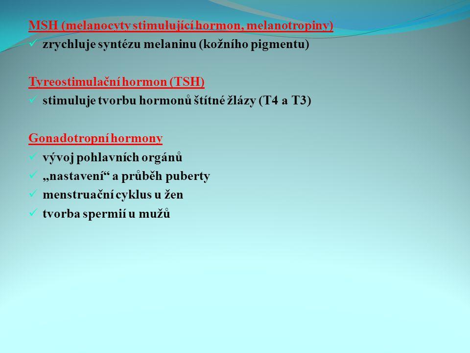 """MSH (melanocyty stimulující hormon, melanotropiny) zrychluje syntézu melaninu (kožního pigmentu) Tyreostimulační hormon (TSH) stimuluje tvorbu hormonů štítné žlázy (T4 a T3) Gonadotropní hormony vývoj pohlavních orgánů """"nastavení a průběh puberty menstruační cyklus u žen tvorba spermií u mužů"""
