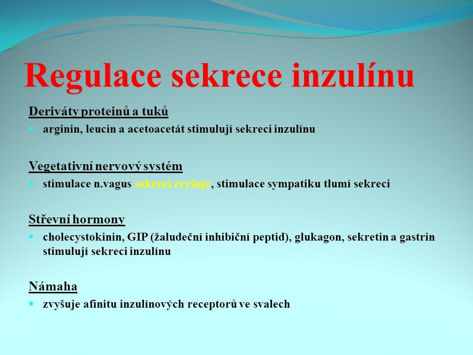 Regulace sekrece inzulínu Deriváty proteinů a tuků  arginin, leucin a acetoacetát stimulují sekreci inzulínu Vegetativní nervový systém  stimulace n.vagus sekreci zvyšuje, stimulace sympatiku tlumí sekreci Střevní hormony  cholecystokinin, GIP (žaludeční inhibiční peptid), glukagon, sekretin a gastrin stimulují sekreci inzulínu Námaha  zvyšuje afinitu inzulínových receptorů ve svalech