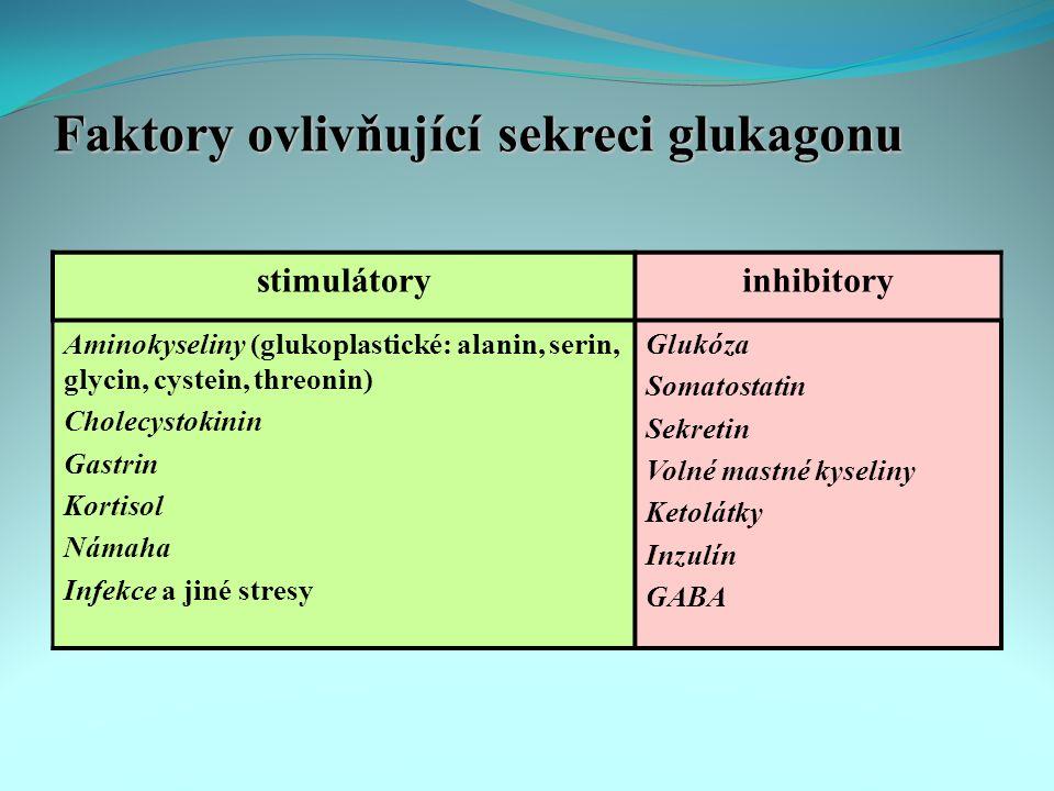 Faktory ovlivňující sekreci glukagonu stimulátoryinhibitory Aminokyseliny (glukoplastické: alanin, serin, glycin, cystein, threonin) Cholecystokinin Gastrin Kortisol Námaha Infekce a jiné stresy Glukóza Somatostatin Sekretin Volné mastné kyseliny Ketolátky Inzulín GABA