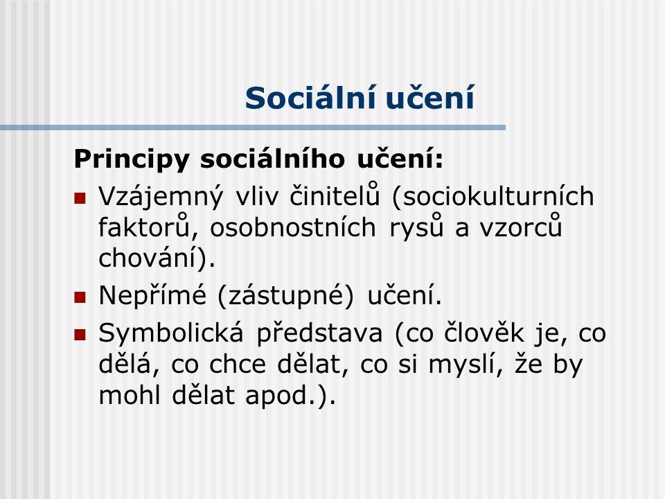 Sociální učení Průkopník, autor: Albert Bandura Výsledky sociálního učení: osvojování sociálních rolí porozumění sociálním kontextům adaptace na nové