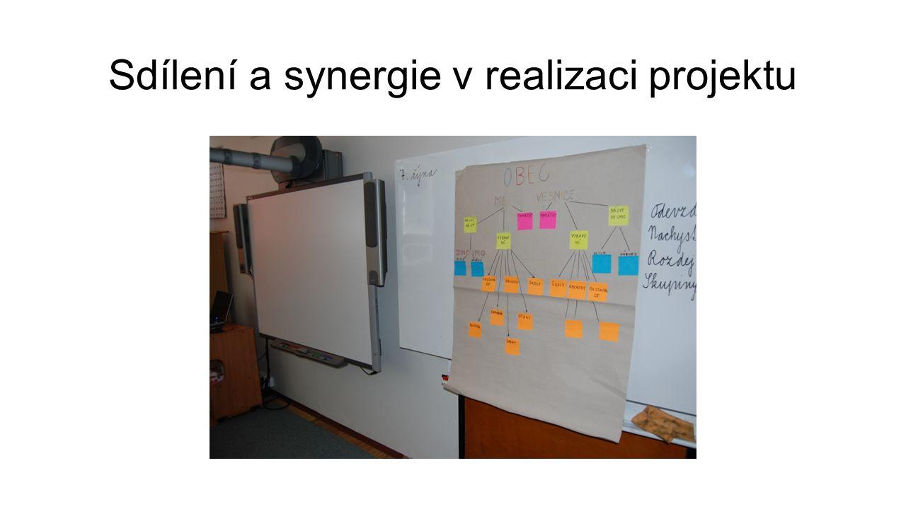 Sdílení a synergie v realizaci projektu