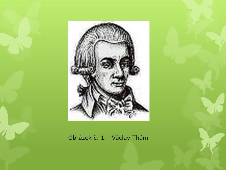 Obrázek č. 1 – Václav Thám
