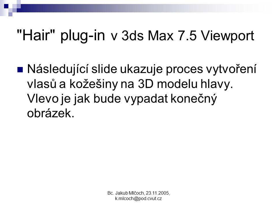Hair plug-in v 3ds Max 7.5 Viewport Následující slide ukazuje proces vytvoření vlasů a kožešiny na 3D modelu hlavy.