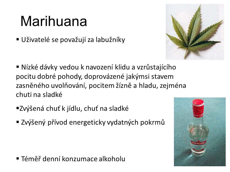 Marihuana  Uživatelé se považují za labužníky  Nízké dávky vedou k navození klidu a vzrůstajícího pocitu dobré pohody, doprovázené jakýmsi stavem zasněného uvolňování, pocitem žízně a hladu, zejména chuti na sladké  Zvýšená chuť k jídlu, chuť na sladké  Zvýšený přívod energeticky vydatných pokrmů  Téměř denní konzumace alkoholu
