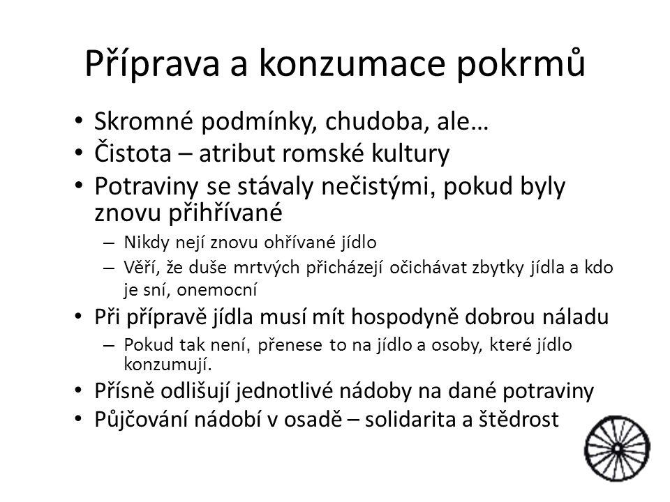 Zdravotní stav romské populace v ČR V březnu 2007 publikovaná studie Sivákové a kol.