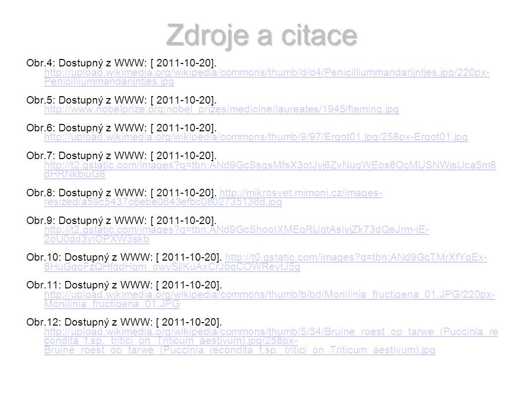 Zdroje a citace Obr.4: Dostupný z WWW: [ 2011-10-20].