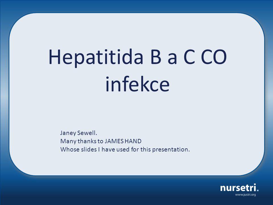 Co je Hepatitida.