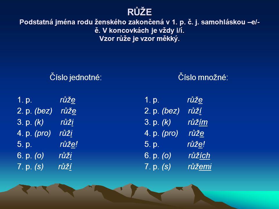 PÍSEŇ Podstatná jména zakončená v 1.p. č. j. souhláskou a ve 2.