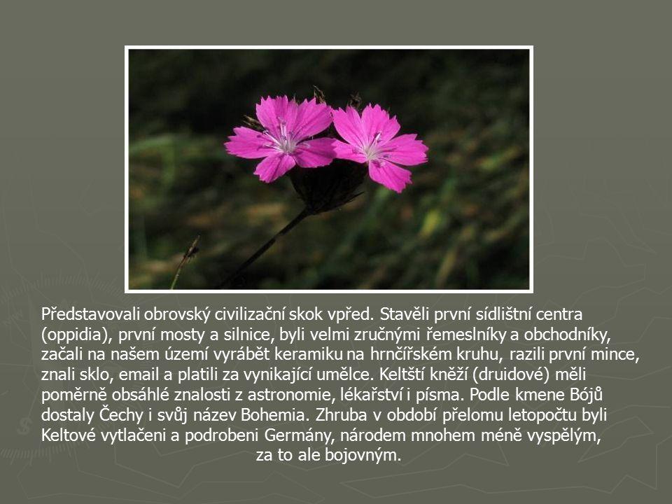 Keltové jsou vůbec první pojmenovaní obyvatelé české kotliny.