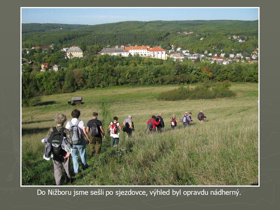Nižboru dominuje zámek který býval mohutným gotickým hradem založeným českým králem Přemyslem Otakarem II. okolo první poloviny 13. století